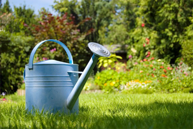 garden watering supplies